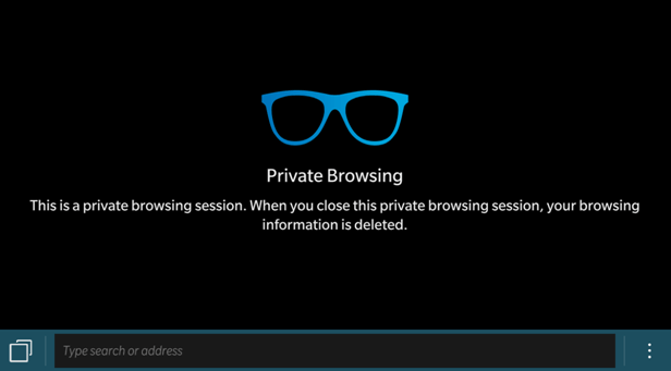 Private browsing session